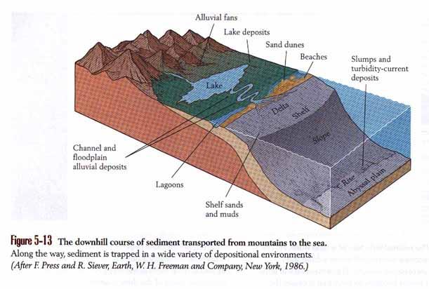 sedimentary environments Sedimentary environments and palaeogeography of the late llandovery and earliest wenlock of north connemara, ireland david john william piper.